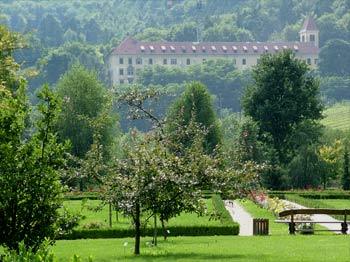 favorite place: Maribor botanic garden 1