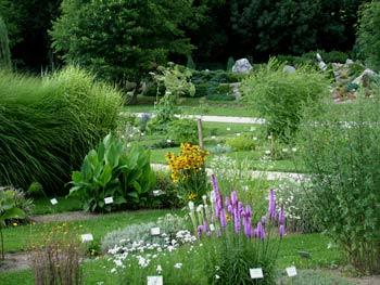 favorite place: Maribor botanic garden 2