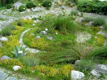 favorite place: Maribor botanic garden 7