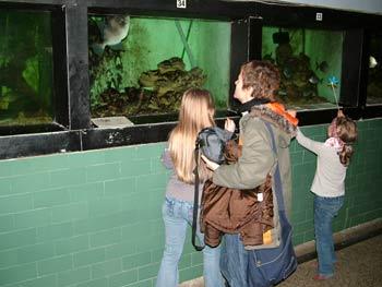 The Maribor Aquarium from inside