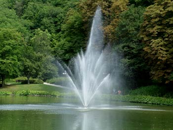 Favorite place - Maribor city park 7