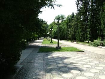 Favorite place - Maribor city park 1