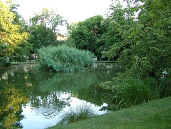 Favorite place - Maribor city park 2