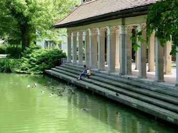 Maribor park - feeding birds