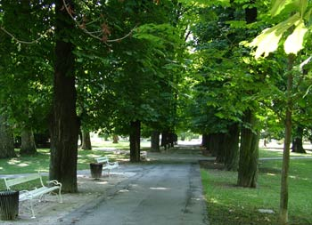 Favorite place - Maribor city park 5