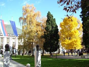Maribor Slomsek square