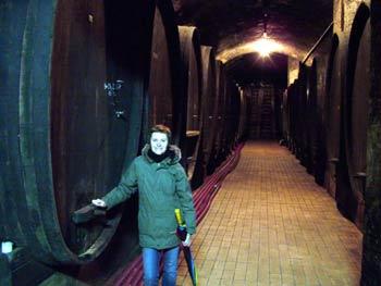 More wooden barrels in Vinag wine cellar.