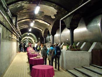 Wine tasting tunnel in Vinag wine cellar.