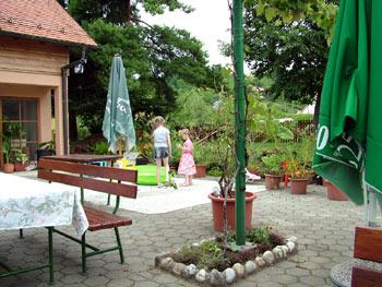 Anderlic Maribor kids 1