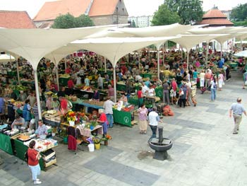 Maribor new open market 1