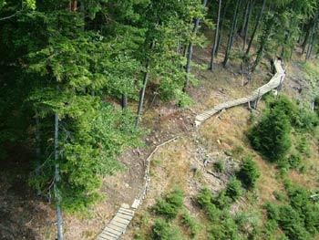 Mountain biking route on Pohorje