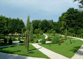 favorite place: Maribor botanic garden 4