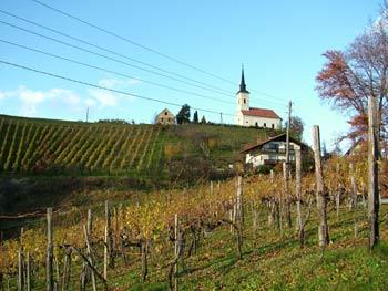 Favorite route - wine road Urban 2