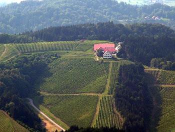 Favorite routes - Pohorje Meranovo