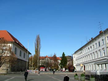 Maribor city guide - liberty square