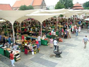 Maribor new open market 1
